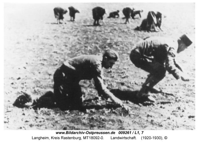 Langheim, Landwirtschaft