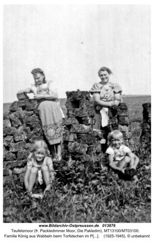 Familie König aus Wabbeln beim Torfstechen im Packledimmer Moor
