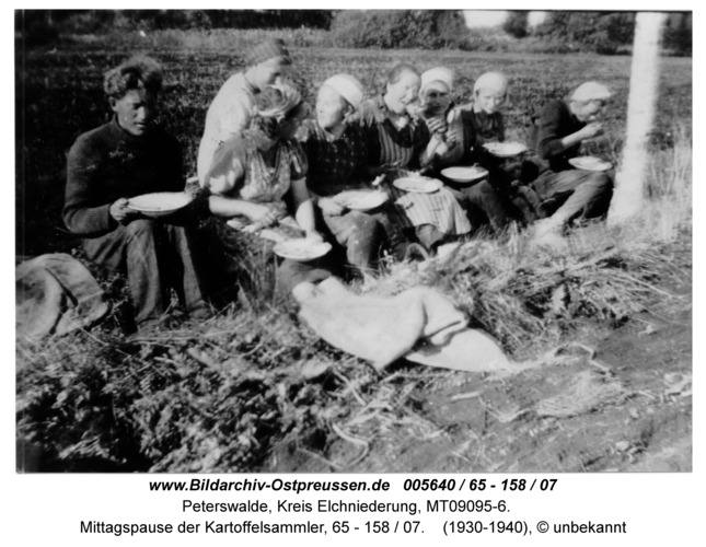 Peterswalde, Mittagspause der Kartoffelsammler, 65 - 158 / 07