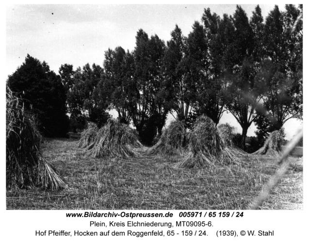 Plein, Hof Pfeiffer, Hocken auf dem Roggenfeld, 65 - 159 / 24