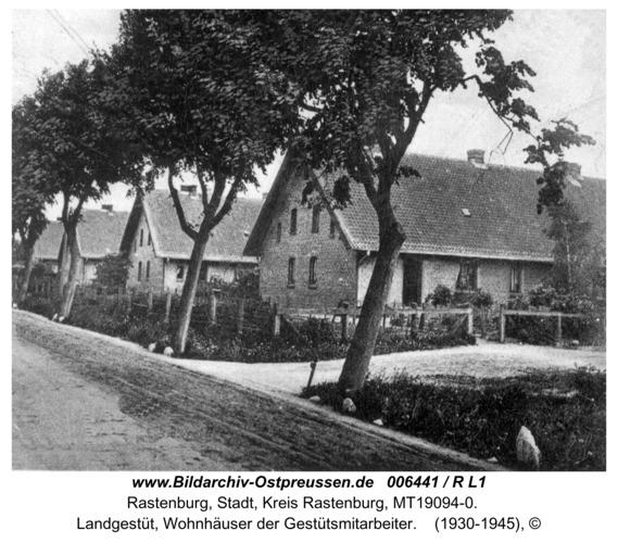 Rastenburg, Landgestüt, Wohnhäuser der Gestütsmitarbeiter