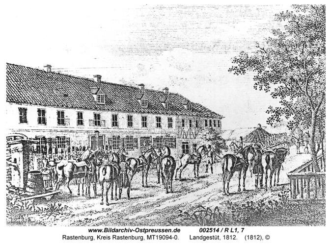 Rastenburg, Landgestüt