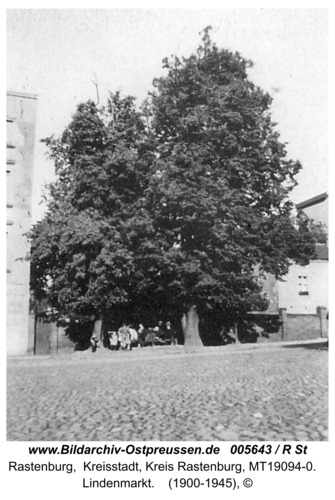 Rastenburg, Lindenmarkt