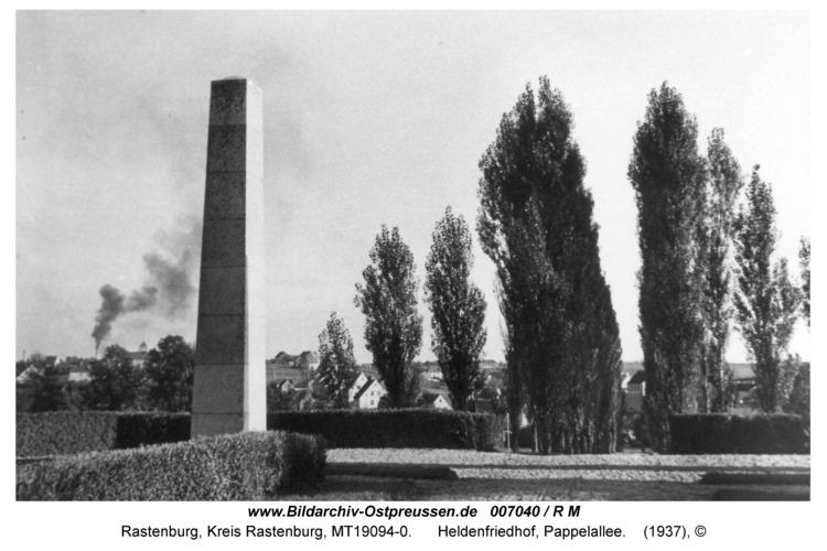 Rastenburg, Heldenfriedhof, Pappelallee
