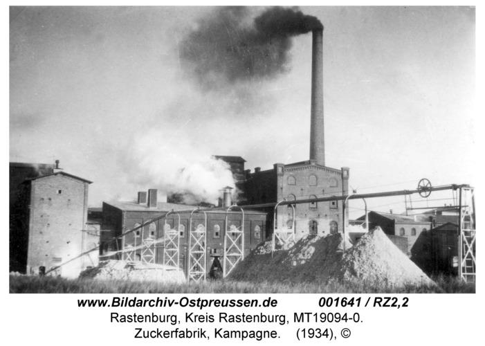 Rastenburg, Zuckerfabrik, Kampagne