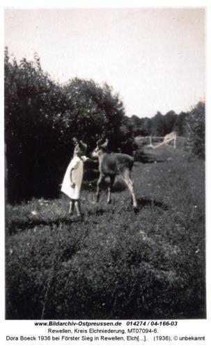 Rewellen 04-166-03, Dora Boeck 1936 bei Förster Sieg in Rewellen, Elchaufzucht mit der Flasche