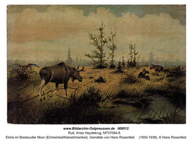 Elche im Bredszuller Moor (Elchwinkel/Kleinelchwinkel). Gemälde von Hans Rosenfeld