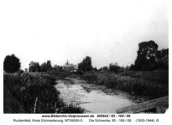 Ruckenfeld, Die Schnecke; 65 - 169 / 06