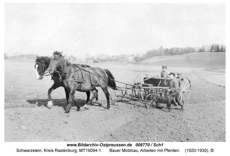 Schwarzstein, Bauer Motzkau, Arbeiten mit Pferden