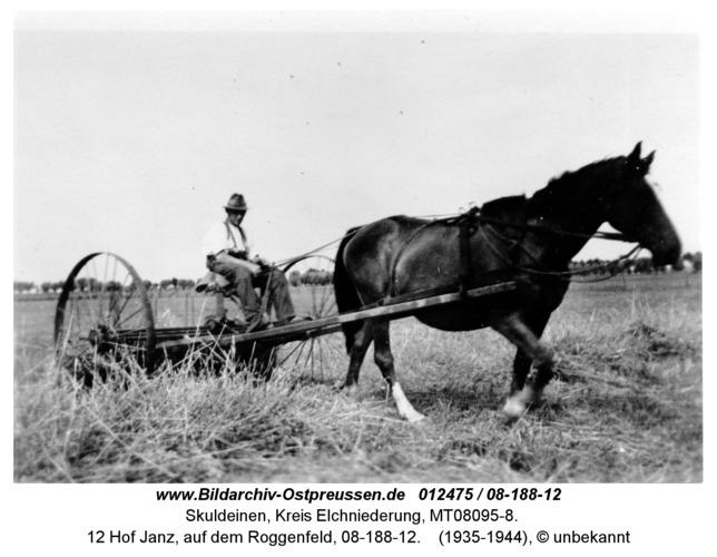 Skuldeinen, 12 Hof Janz, auf dem Roggenfeld, 08-188-12