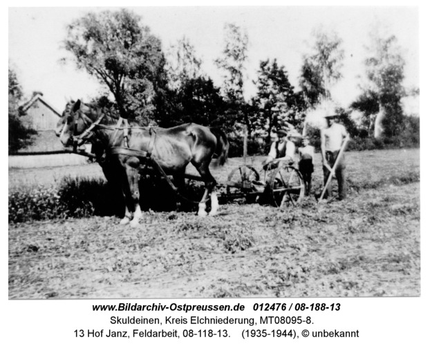Skuldeinen, 13 Hof Janz, Feldarbeit, 08-118-13