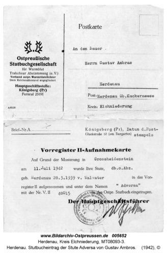 Herdenau. Stutbucheintrag der Stute Adversa von Gustav Ambros