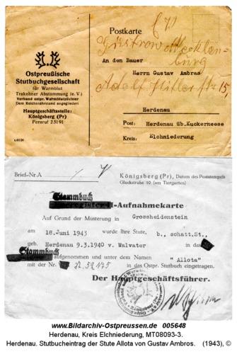 Herdenau. Stutbucheintrag der Stute Allota von Gustav Ambros