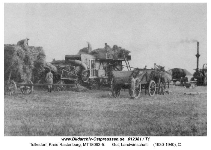 Tolksdorf, Gut, Landwirtschaft