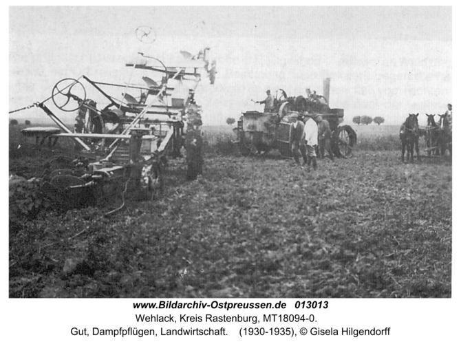 Wehlack, Gut, Dampfpflügen, Landwirtschaft
