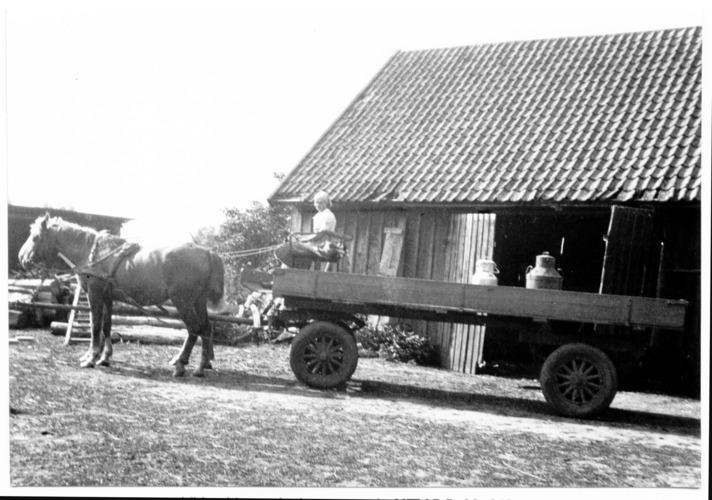 Wildwiese, Milchwagen auf dem Weg zur Molkerei, B07, 02-213