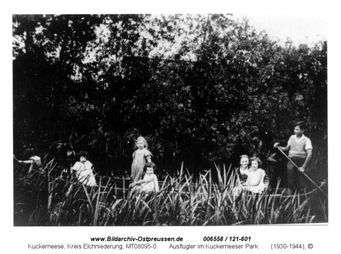 Ausflügler im Kuckerneeser Park