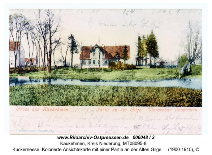 Kuckerneese. Kolorierte Ansichtskarte mit einer Partie an der Alten Gilge