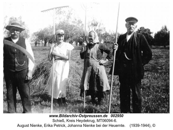 Schieß, August Nienke, Erika Petrick, Johanna Nienke bei der Heuernte