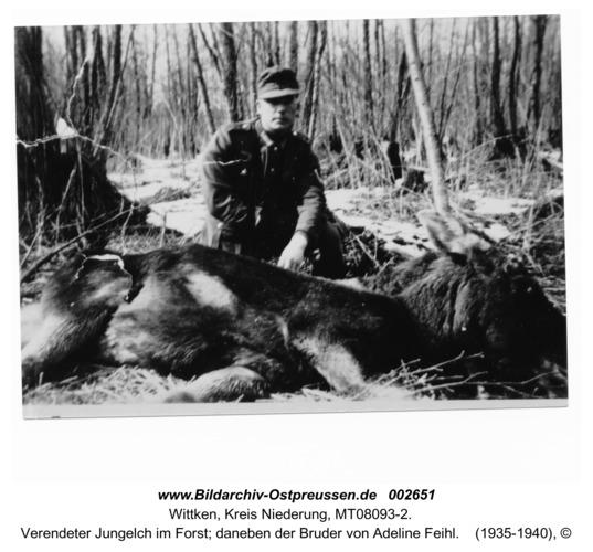 Wittken, Verendeter Jungelch im Forst; daneben der Bruder von Adeline Feihl